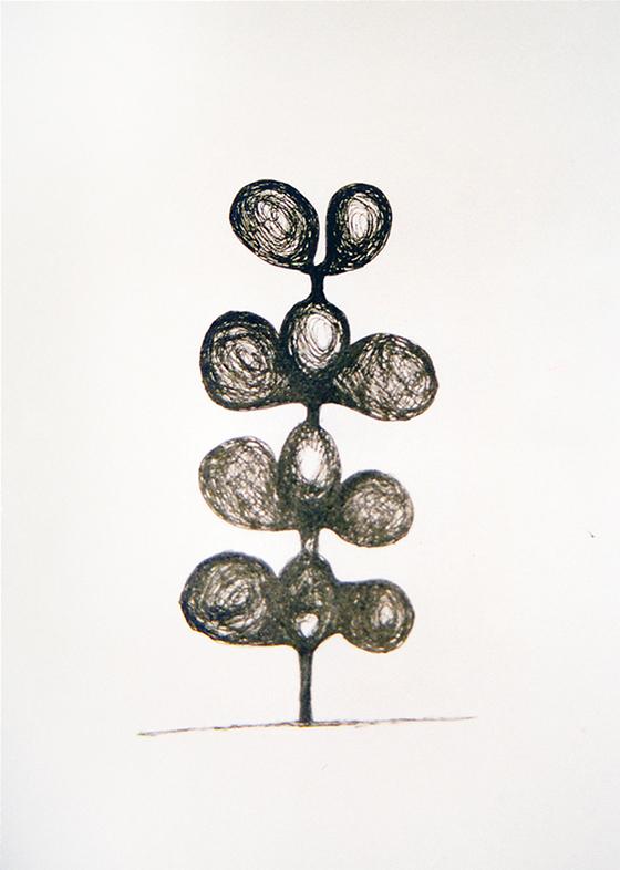 bloem plant tuin
